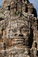 A strangler fig takes root in on a face tower gate of Ta Prohm, built by Jayavarman VII, part of the  Angkor Wat temple complex - Siem Reap, Cambodia...