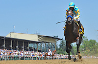 Paynter wins an allowance race on the undercard on Preakness Day at Pimlico Race Course on May 19, 2012
