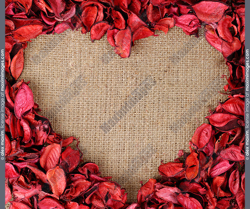 Heart-shaped frame made from red flower petals on burlap fabric background