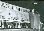 Fish Fry Early Years