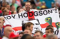 An England fan with a Roy Hodgson flag