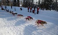 DeeDee Jonrowe drives her team down Wilford Lane during the 2013 Iditarod restart (Stephen Nowers photo).