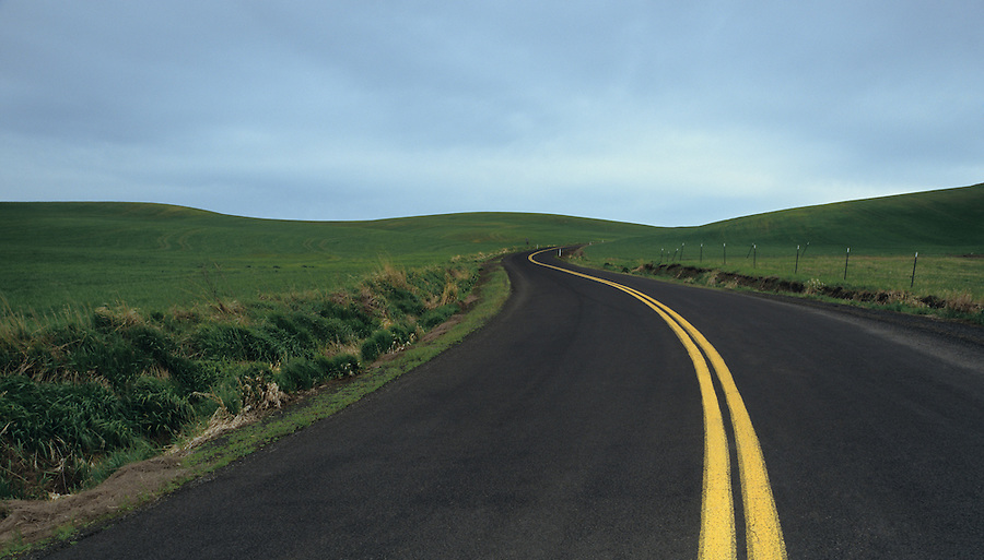 A road curves into the hills of the Palouse in Eastern Washington State.