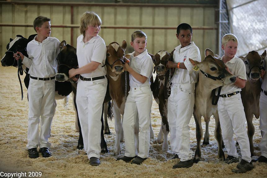 left to right-Tyler Robinson, Zach Steensma, Travis Lenssen, Pedro Chavez, Luke Wolfisberg-Novice Fitting and Showing of Jersey calves. .NW Washington Fair. August 18, 2009 PHOTOS BY MERYL SCHENKER