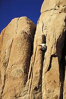 Man rock climbing, Joshua Tree National Monument, California