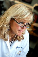 8/5/10 11:04:56 AM -- Boston , Massachusetts..Boston University School of Medicine researcher Dr. Ann McKee at Brain Bank...Photo by Vernon Doucette  for Boston University Photography