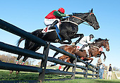 11/02/2014 - Pennsylvania Hunt Cup Races