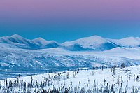 Arctic palette of pink and purple sky lights the evening winter sky in the foothills of the Brooks range mountains, Alaska.
