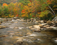 Swift River in autumn, White Mountains National Forest, New Hampshire, USA.