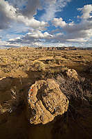 Rocks and badlands in the Bighorn Basin