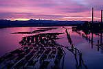 Sunrise over slough with silhouetted pilings and lumber on waterway near lumber mill with smoke stacks, Everett, Washington State USA