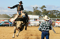 Jindabyne Rodeo. Jindabyne,NSW Australia.<br /> Rodeo is an integral part of rural Australian lifestyle and competitors travel great distances to compete on the circuit. The Australian Rodeo consists of many events some of which are junior and ladies' (open) barrel race, saddle bronc riding, bull riding, bareback bronc riding, rope and tie, steer wrestling, team roping and the steer ride. Males, females and kids are all involved in the Australian rodeo circuit.<br /> Pictures James Horan