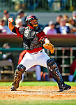 2 March 2009: Houston Astros' catcher Humberto Quintero in action during a Spring Training game against the New York Yankees at Osceola County Stadium in Kissimmee, Florida. The teams played to a 5-5, 9-inning tie. Mandatory Photo Credit: Ed Wolfstein Photo
