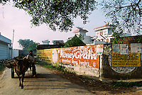 A bull cart makes its way past adverts for international money transfers in a village near Jalandhar. The homes of NRIs (Non-Resident Indians) are obvious not only because of their size and opulence, but are also marked by water tanks designed as planes, a sign of those who have travelled overseas.