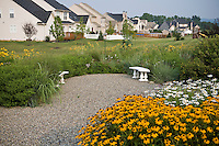 Small backyard meadow garden with gravel patio lawn substitute in community landscape housing development