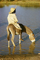Boy on donkey drinking water in pool in Burkina Faso, Africa.