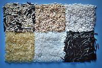 Vari tipi di riso. Various types of rice. ..