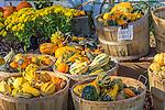 Fall in West Newbury, Massachusetts, USA