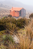 Mount Brown Hut in clouds, West Coast, South Westland, New Zealand