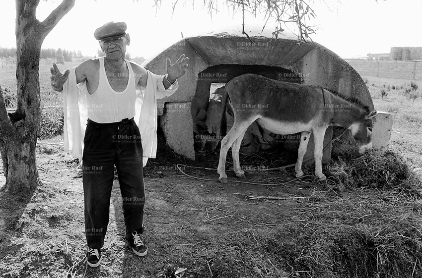 Albania. Province of Vlora. Near the village of Novo Sela. A farmer and his donkey eating hay. Enver Hoxha (1908-1985) was for 40 years a dictator and a communist leader. He decided after the historic break with Russia in 1961 to protect his country from any invaders by investing in a massive fortification (more than a million bunkers were built over the years till 1985). © 2003 Didier Ruef
