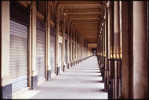 Jardin du Palais Royal, Royal Palace Garden,  Paris, France by Paul Cooklin