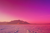 color at the bonneville salt flats
