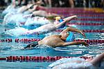 Swimming - Jnr Champs, Mako Zone, 18 February 2017