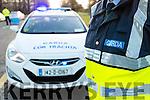 Garda Checkpoint stock photos, Kerry.