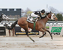 Aqueduct Winter Stakes Action 2011-2012
