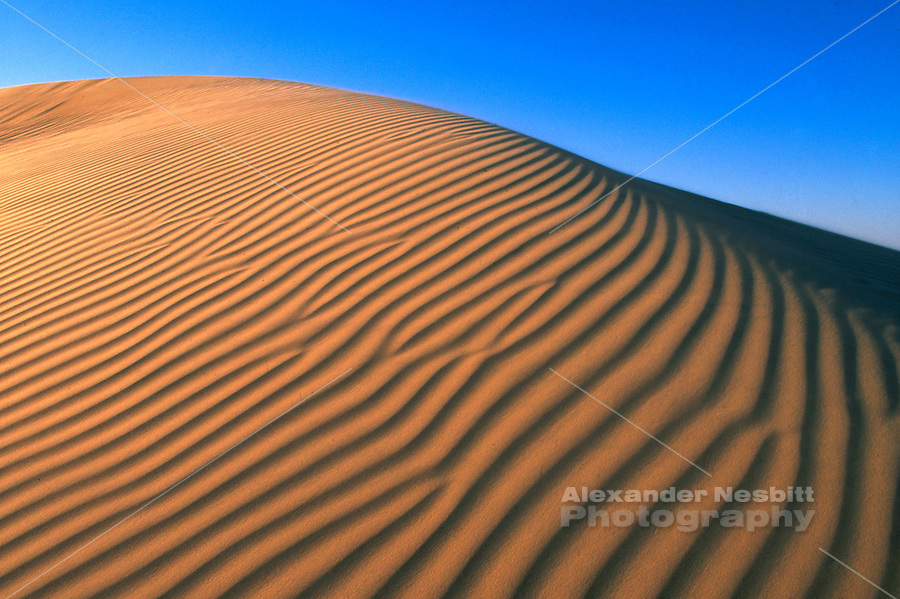 Egypt, 2000 - A rippled sand dune in the Great Sand Sea backed by blue skies.