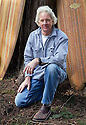 WA04021-00....WASHINGTON - Paul Jensen designer and builder of Hollow Wood Surfboards.