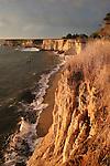 Cliffs in Davenport at sunset