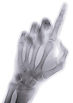 X-ray image of a reaching finger (blue on white) by Jim Wehtje, specialist in x-ray art and design images.