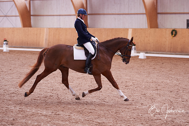 Helen Johansson riding seven year old Strano (Hejbols De Strano, e De Noir - Golfstrom II, born 2007, breeder Per Torp, owner Helen Johansson) in dressage competition Msv C:1.  <br /> The couple finished on 12th place with 65,851%.<br /> Skabersjoortens Ryttarforening in Svedala, Sweden.<br /> April 2014.<br /> Only for editorial use.