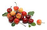 Cherries still life.