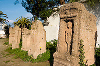 Low angle view of commemorative stelae in the Tophet (children's graveyard), Carthage, Tunisia, pictured on January 27, 2008, in the afternoon. Carthage was founded in 814 BC by the Phoenicians who fought three Punic Wars against the Romans over this immensely important Mediterranean harbour. The Romans finally conquered the city in 146 BC. Subsequently it was conquered by the Vandals and the Byzantine Empire. Today it is a UNESCO World Heritage. The Tophet was used from 7th century BC until the fall of Carthage. The name and excavations suggest that the Phoenicians sacrificed children here. Picture by Manuel Cohen.