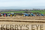 At the Causeway Ploughing Match at O'Connor farm, Sally Road, Ballyduff on Sunday