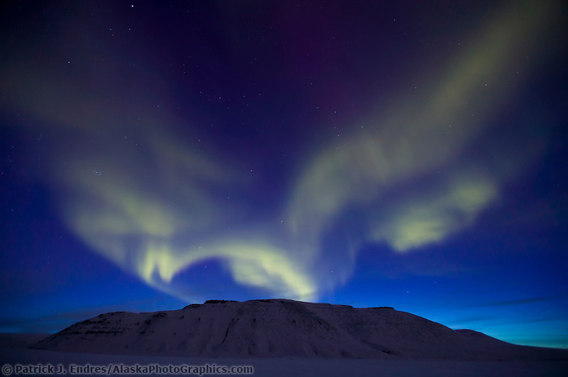 Aurora borealis dances over Slope mountain at the start of the Arctic coastal plains. Blue light of evening dusk silhouettes the mountain, Arctic Alaska