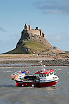 Lindisfarne Castle and harbour, Holy Island (Lindisfarne), Northumberland, UK