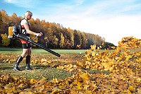 Woman working using leaf blower. Flying yellow autumn leaves. Forest, field and rural landscape.