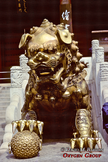 Gold Lion Statue at Forbidden City