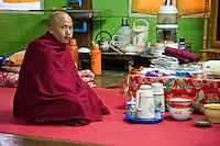 Myanmar, Burma.  Burmese Buddhist Monk, Alodaw Pauk Pagoda, Nampan Village, Inle Lake, Shan State.