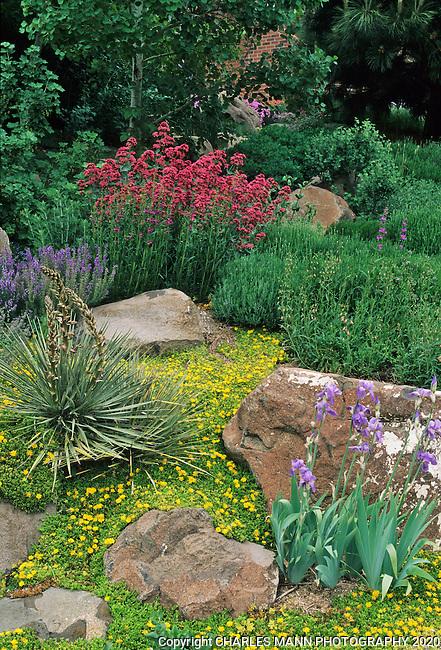 Keskimaki garden golden colorado mann charles mann photography - Mountain garden landscaping ideas ...