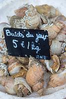 France, Pas-de-Calais (62), Boulogne-sur-Mer:  Bulots,  Etal des pêcheurs au port de pêche, Vente directe- Bulots  // France, Pas de Calais, Boulogne sur Mer: Whelks, Stall fishermen at the fishing port, direct sales - whelk