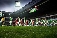 Fussball Bundesliga 2012/13: Werder Bremen - Fortuna Duesseldorf