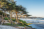 A view of the beach at Carmel, through cypress trees, at sunrise on a Sunday morning.