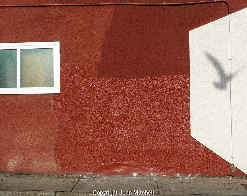 Seagull shadow on a red stucco wall with squares and rectangles designs