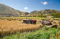 Red tractor on farmland, Waitaki Valley, South Island, New Zealand - stock photo, canvas, fine art print