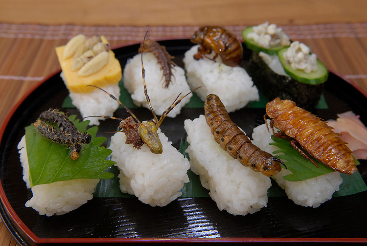 eating-insects13 - Unsay lami bawonon kon mangaligo sa dagat? - Question and Answer