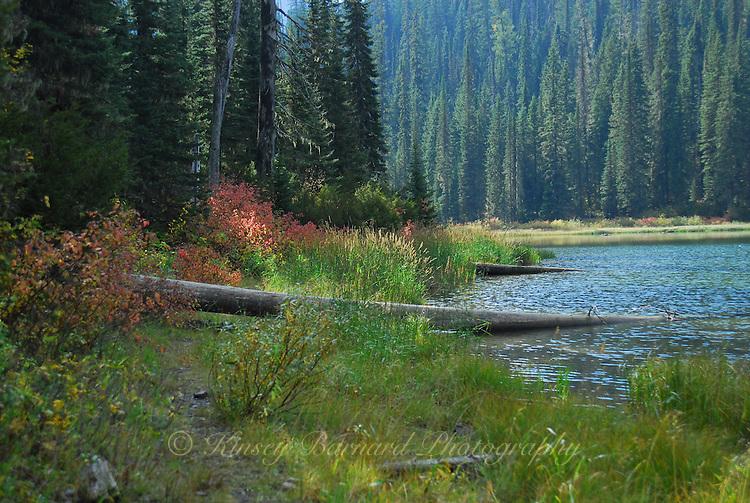 Trail going around Handkerchief Lake
